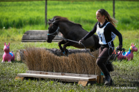 Pony Jump & Run Griesbach leider abgesagt